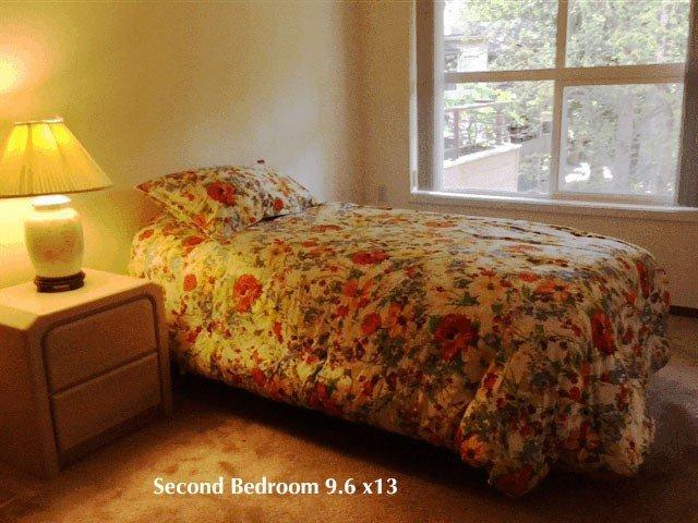 second bedroom, 9.6 x 13'